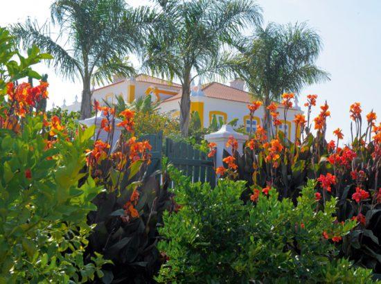 jardin au Portugal